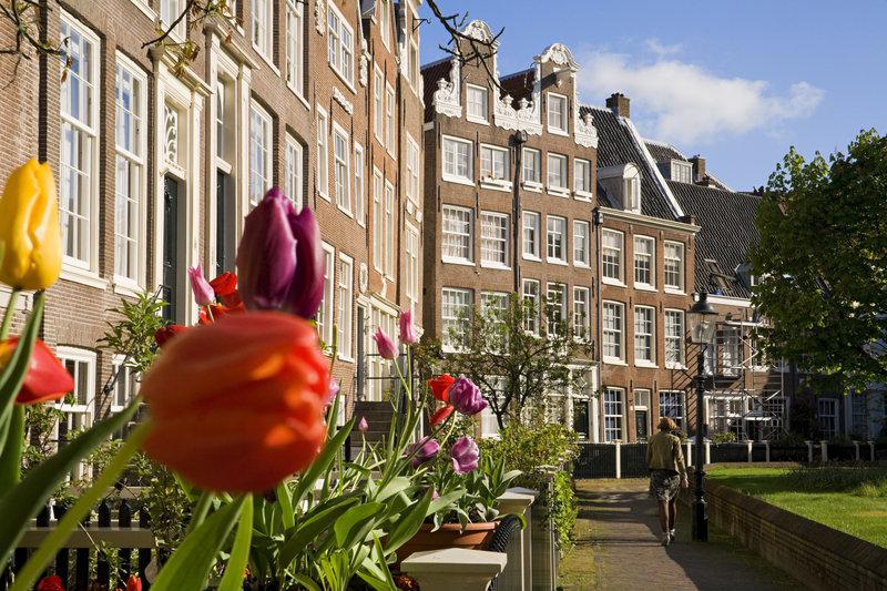 billiga flyg till amsterdam